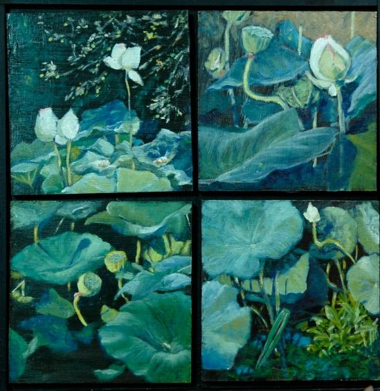 Lotus Studies 13x13 $265