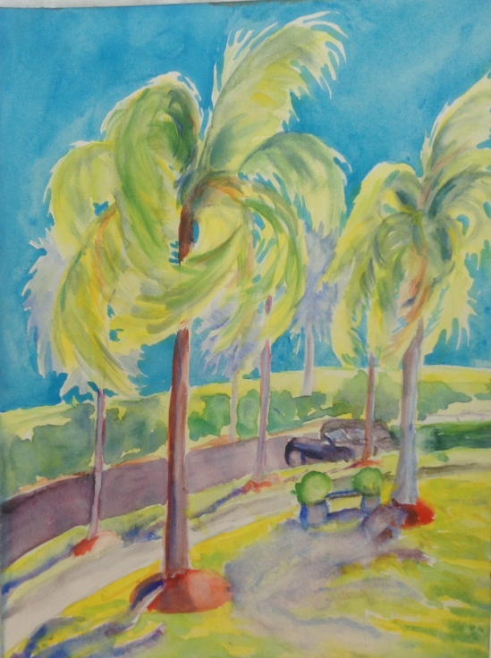 Study of palm trees in stiff wind