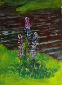 Lupines, AFTER