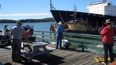 Castine dock painters