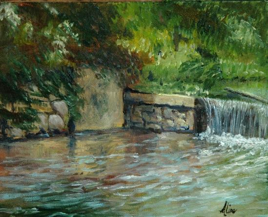 Griffin Park dam
