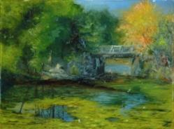 Clark Pond in Auburn WIP