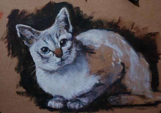 Grey-eyed cat (wip)