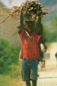Haitian boy, photo