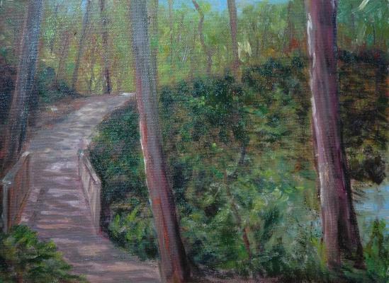 A walk by Dorrs Pond