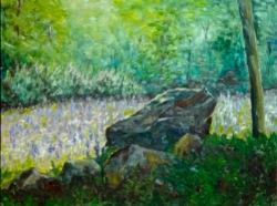 Field of Lupines in Jaffrey
