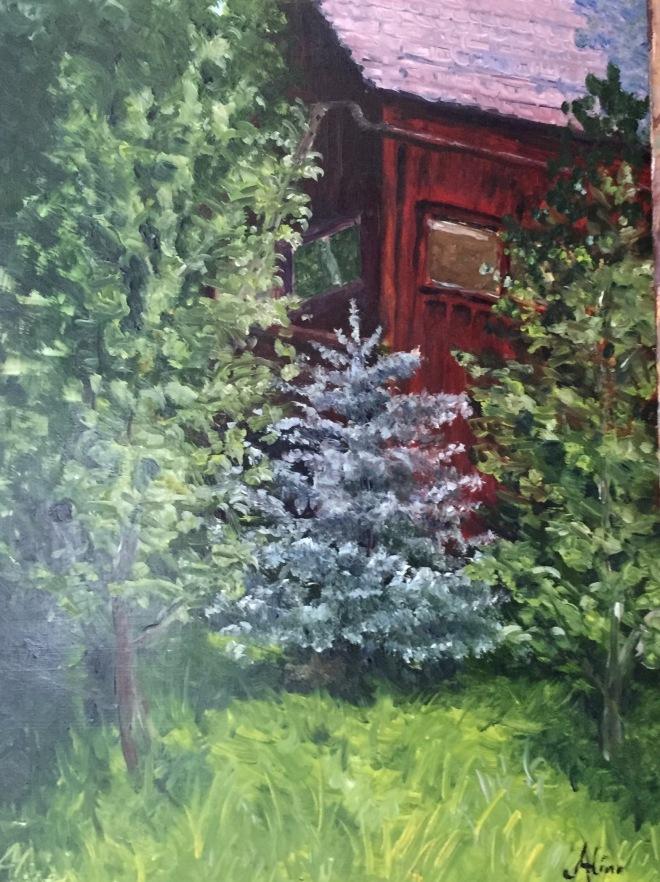 Little Blue Spruce