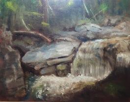 Upper Ammonoosuk Falls, wip