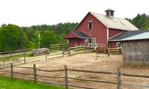Horse yard at Stonewall Farm