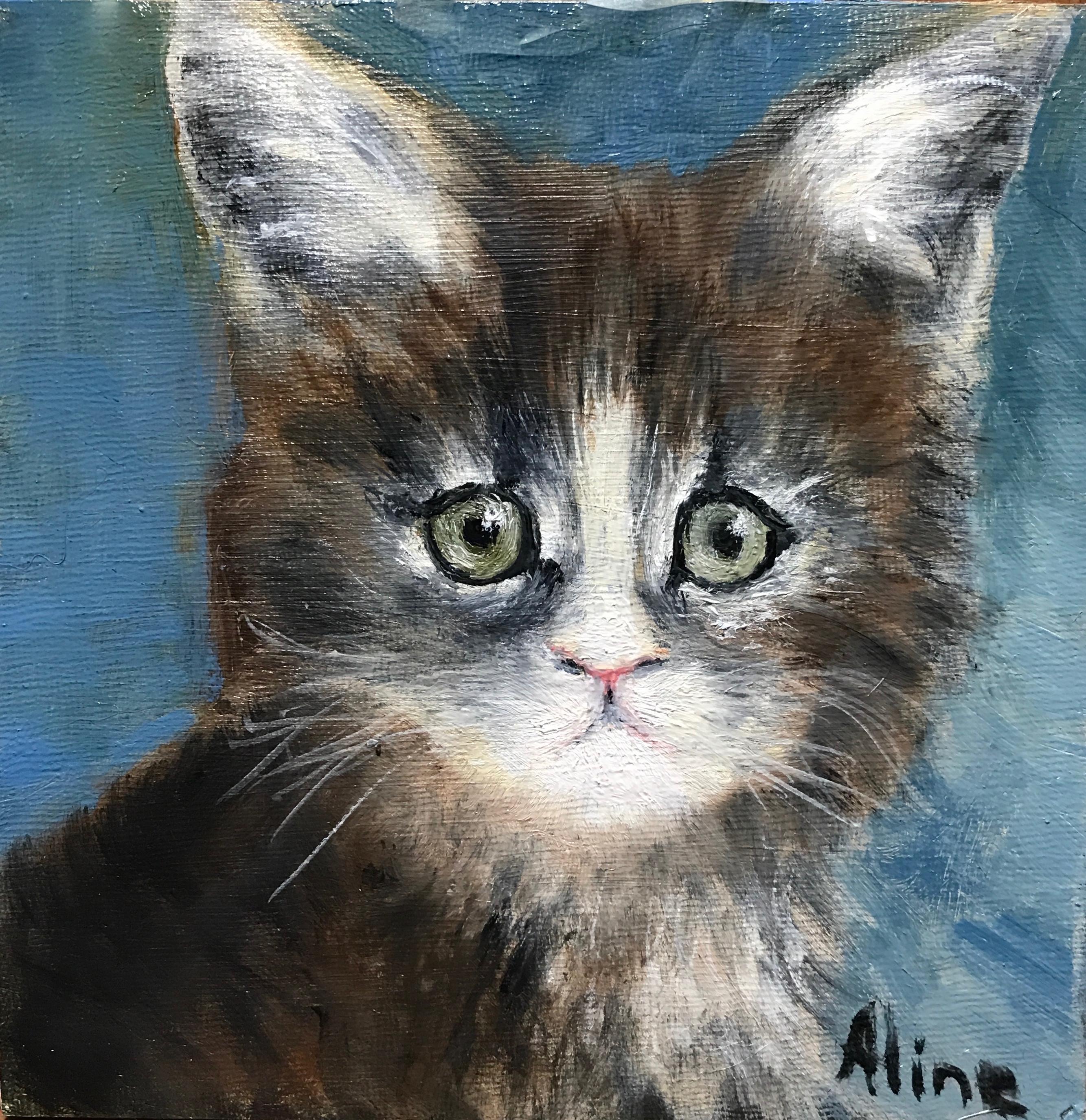 Worried Kitten